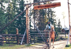 The main gate at Meadow Springs Ranch